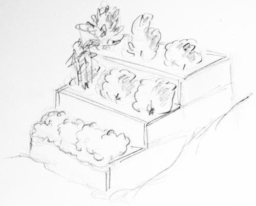 odla kryddor terrass
